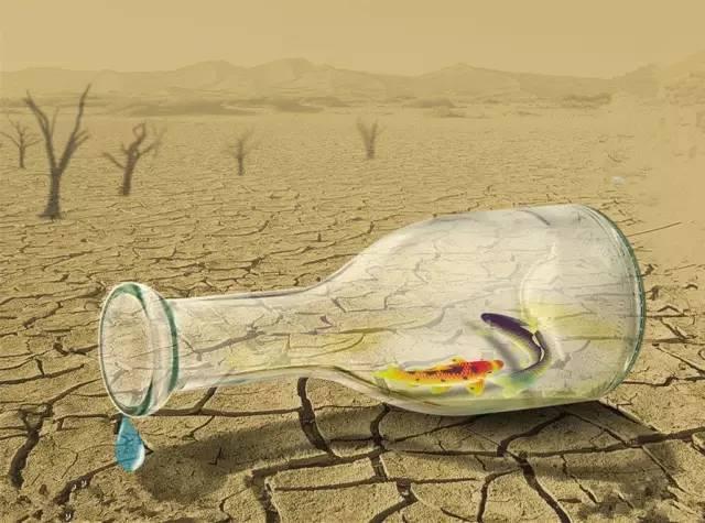 共享水资源的新模式