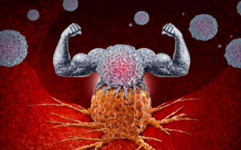 汤臣倍健辅酶Q10提醒我们,提升免疫力,保护自身健康