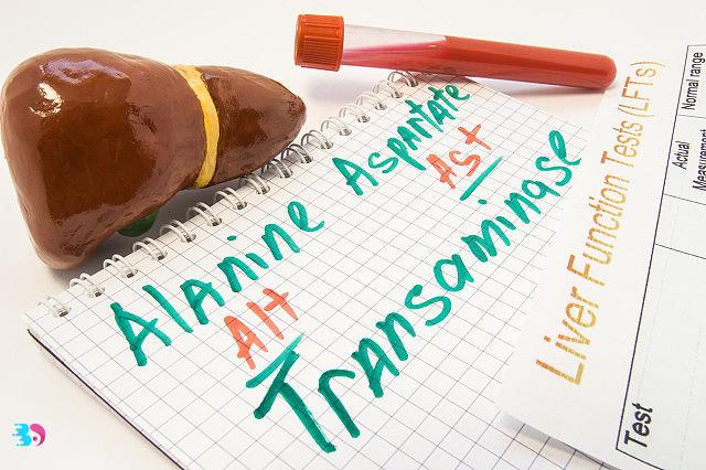 新时期肝脏的三大负担你有吗?快来看看水飞蓟的护肝作用!